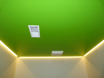 14 12 4 restroom green lacquered ceiling2