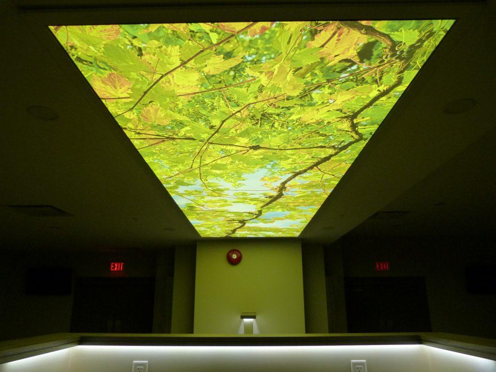 Illuminated Ceilings Amp Feature Walls Phoenix Stretch